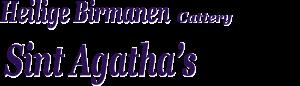Banner 2014-2